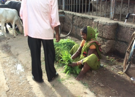 Grass seller in front of the Jagnnath Temple