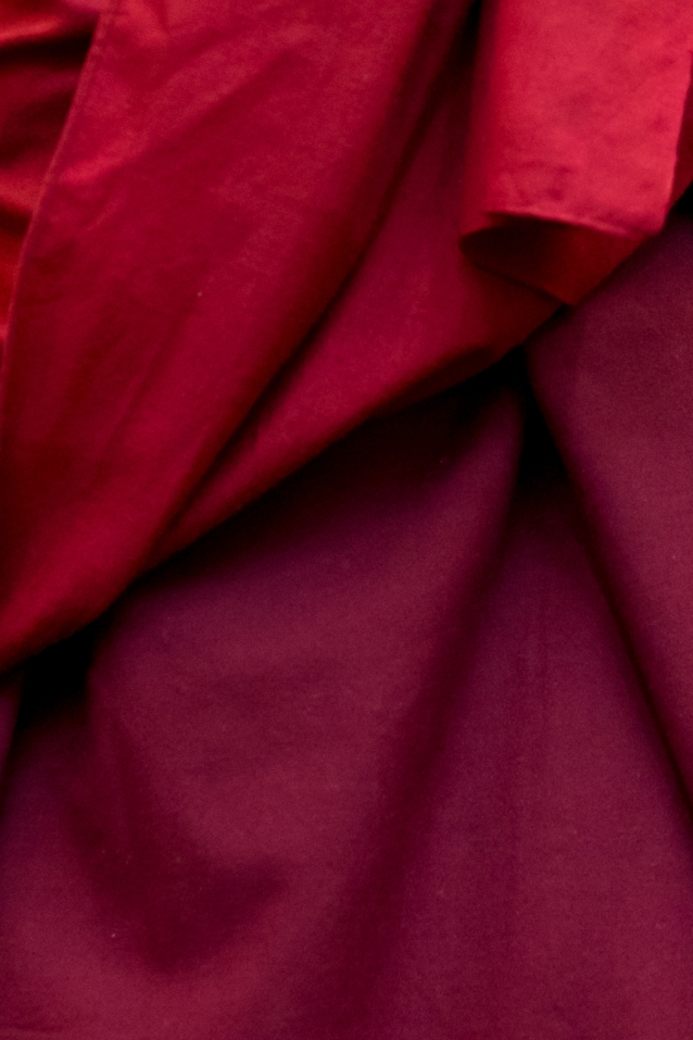 Dalai Lama, photo, Tim Steadman