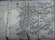 aspen, pen & ink, Anna Citrino