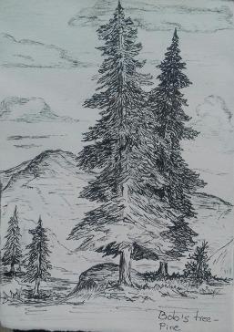 pine, pen & ink: Anna Citrino