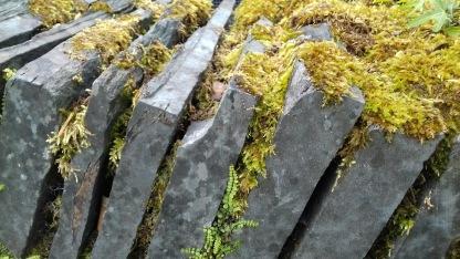 Stone wall, UK