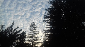 Soquel, California sunset sky