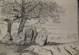 tree in California landscape, pen & ink, Anna Citrino